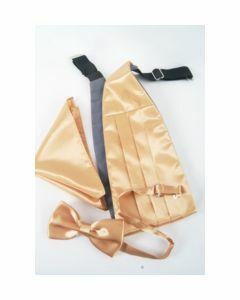 Set met goudkleurige cumberband, vlinderstrik en pochet