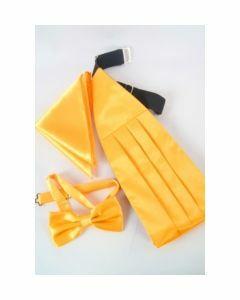 Set van geel satijn met cumberband, vlinderstrik en pochet